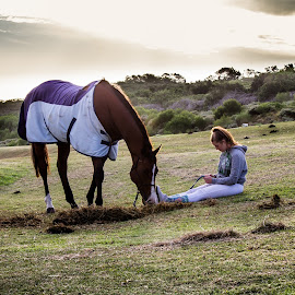 Show jumping 3 by Tommy Glad - Animals Horses ( long day, chillin, horse riding, show jumoing, horse )
