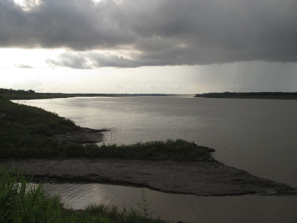 Amazon River Dark