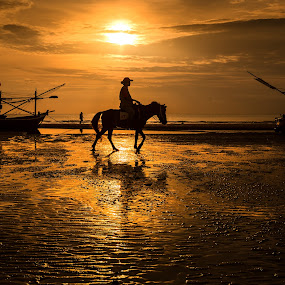 Walk by Arthit Somsakul - Landscapes Beaches ( sand, sillhouette, horse, sea, boat, walk )