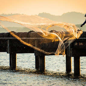 Golden Net by Mahdi Hussainmiya - People Street & Candids ( scenery., action, fishing net, dusk, golden hour )