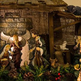 by Steve Wieseler - Public Holidays Christmas (  )