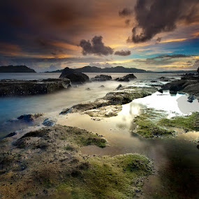 Sea galore by Carlos David - Landscapes Waterscapes