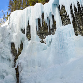Johnston Canyon by Ryan Gaboury - Landscapes Caves & Formations ( blue sky, canada, alberta, frozen falls, ice, ice climbing, trees, banff )