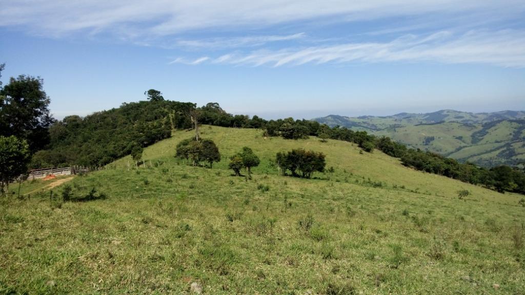 OPORTUNIDADE!!! Belíssima Área à venda, 7,5 alqueires por R$ 280.000 - Zona Rural - Munhoz/MG