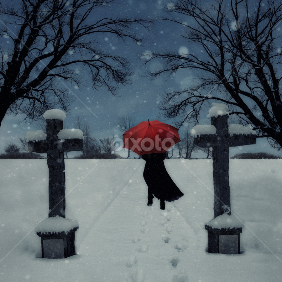 woman in snow by Joana Kruse - People Fine Art ( bone yard, eerie, walking, person, mystery, cemetery, run, running, crucifix, anonymous, girl, bleak, tree, thriller, woman, snow, dark, from behind, lonely, alone, black, coat, scary, desolate, twilight, umbrella, mysterious, snowy, back, snowing, graveyard, red, winter, female, crime, outdoors, outdoor, trees, horror, walk, outside, cross )
