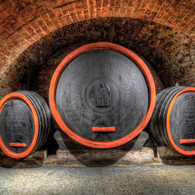 Wine, wine, wine by Klaus Müller - Artistic Objects Other Objects ( wine, cellar, vat, bricks, barrel,  )