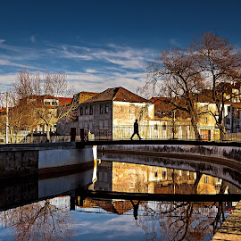 The golden hour. by Miguel Silva - City,  Street & Park  Vistas ( reflections, viseu, cityscape, city, urban, sky, miguel silva, buildings, pavia, trees, bridge, portugal, man, ribeira, river )