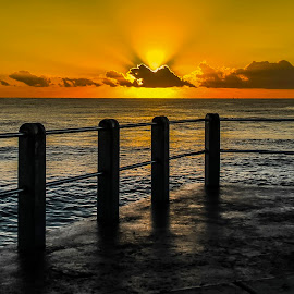 Sunrise Surfer Dude by Andre Oelofse - Sports & Fitness Surfing