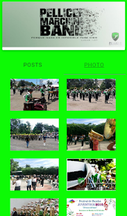 Pellicer Marching Band - screenshot