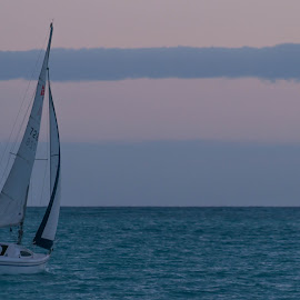 That Stupid Song Is Stuck In My Head Now by Brianne Toma - Transportation Boats ( clouds, parallel, harbor, waterscape, twilight, honolulu, ocean, boat, sailboat, romance, boating, pastels, adventure, hickam, sky, sailing, marina, evening, hawaii )