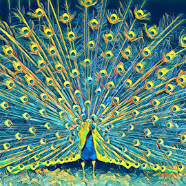 Peacocl by Roxanne Dean - Abstract Patterns ( showup, blue, barn, feathers, yellow )