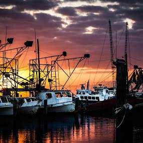 Commercial Shrimpers by Victoria Evans - Transportation Boats ( ome of which didnt weather the storm. )