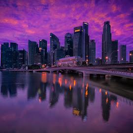 by Mac Evanz - City,  Street & Park  Skylines
