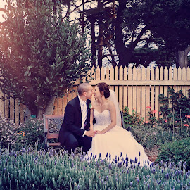 Lavender by Alan Evans - Wedding Bride & Groom ( alan, aj photography )