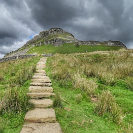 Pen Y Ghent by Sue Walker - Landscapes Mountains & Hills ( walks, mountain, yorkshire, nature, yorkshiredales )