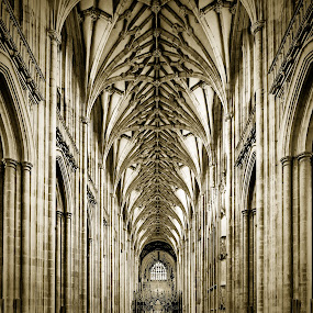 Winchester Cathedral by Gary Beresford - Buildings & Architecture Places of Worship ( winchester, england, gothic, church, arch, cathedral, vault )