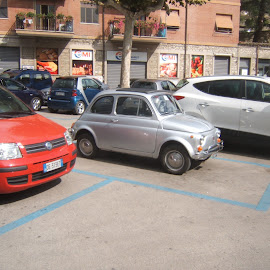 An original Fiat 500 overshadowed by bigger cars by Pauleen Stewart - Transportation Automobiles ( cars, silver, fiat, italy, 500 )