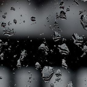 Water on window pane. by Govindarajan Raghavan - Black & White Abstract