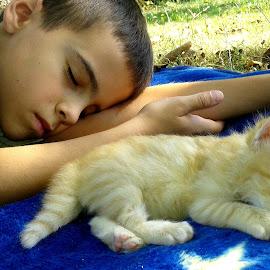 by Megi Šajn - Babies & Children Children Candids ( little boy, cat, two, sleeping, together )