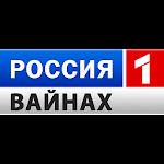 ТВ Вайнах Icon