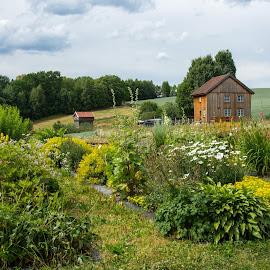 by Anngunn Dårflot - Landscapes Prairies, Meadows & Fields