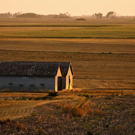 Open Field  by Jeff Brown - Buildings & Architecture Decaying & Abandoned ( farm, field, buildings, decaying, abandoned )