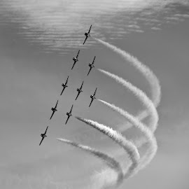 Snowbirds by Campbell McCubbin - Transportation Airplanes ( airplanes, snowbirds, jets, smoke trail, aerobatics )
