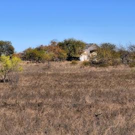 The Old Farm by Karen Hardman - Landscapes Prairies, Meadows & Fields
