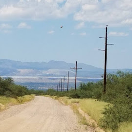 Long Distance Call by Tom MostlyGerman - Landscapes Deserts