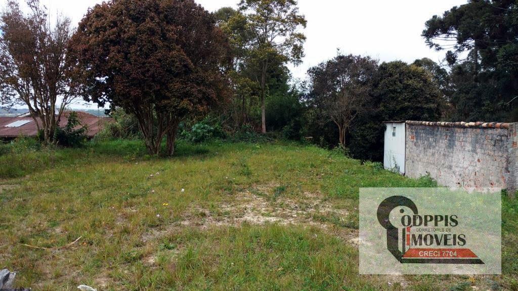 terrenos para alugar em araucaria centro