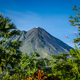Volcano 2 by Laurie Crosson - Landscapes Mountains & Hills ( cloud, blue sky, picture perfect, clear sky, arenal volcano, smoke, costa rica, landscape )