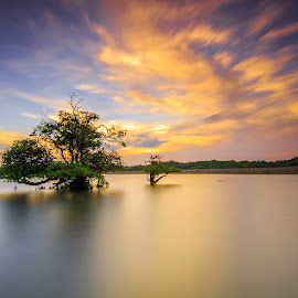 Alone by Dek Seplo - Landscapes Waterscapes (  )