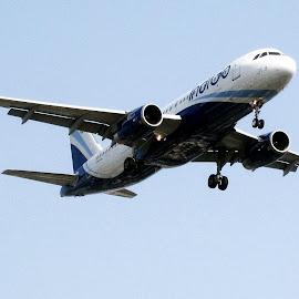 indigo by Venkat Krish - Transportation Airplanes ( #landing, #airplane, #airindigo )