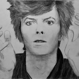 David Bowie by Carmina Shan - Drawing All Drawing ( mars, british, rock, musician, david, david bowie )