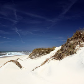 White dune by Gil Reis - Nature Up Close Sand ( beaches, sand, dunes, nature, sea, places, portugal )