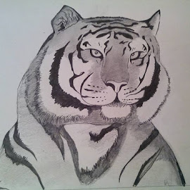 Focus-Artist Rohan Anand by Rahul Kumar Meena - Drawing All Drawing ( rohan anand )