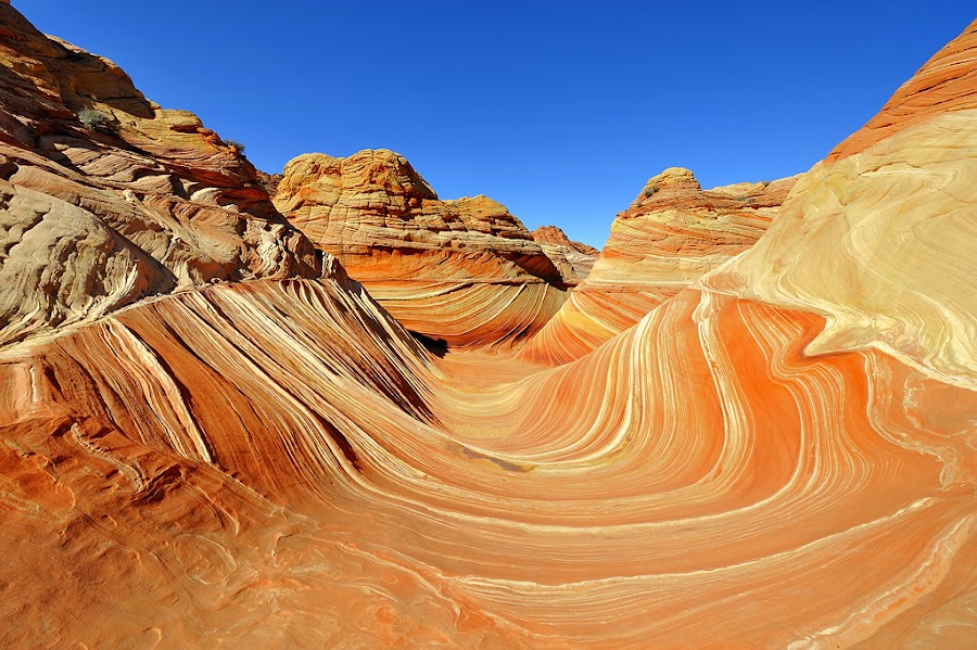 The Wave by Brent Clark - Landscapes Deserts ( desert, the wave, red rock, canyon, landscape )