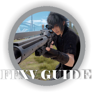 Guide for FFXV Pro