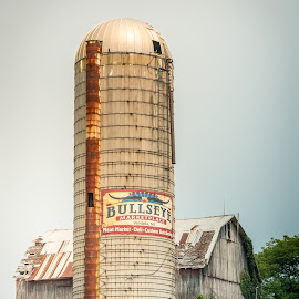 Bullseye by Suzanne Stonehouse Brummel - Buildings & Architecture Decaying & Abandoned ( farm, barn, aged wood, summer, silo, country,  )
