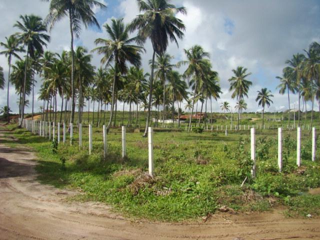Vendo área de 2.033 m² a 40 metros da Praia Bela