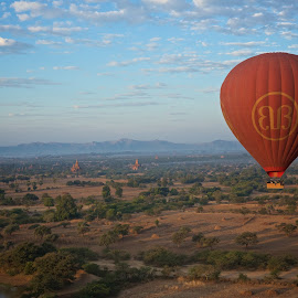 over Bagan by Mike Mulligan - Buildings & Architecture Statues & Monuments ( myanmar, pagodas, morning, bagan, balloon )