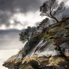 Saltspring Island BC by Jerry Kambeitz - Landscapes Mountains & Hills ( canada, saltspring, pacific, ocean, bc )