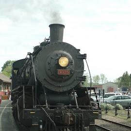 All Aboard by Sherry Carlson - Transportation Trains ( ride, rails, engine, steam train, train whistle )