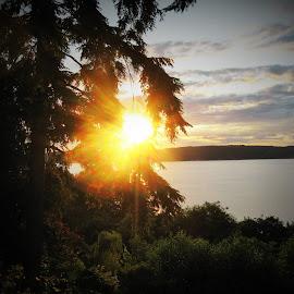 sun by Lavonne Ripley - Landscapes Sunsets & Sunrises