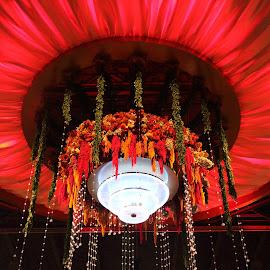 Lights Decor by Subha Priya - Artistic Objects Other Objects ( decor, lights, color, decoration, stage, flower, mood factory, lighting, moods, colorful, light, bulbs, mood-lites )