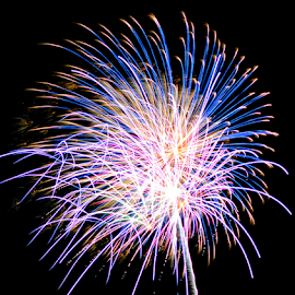 4th Of July by Ashley Hawley - Abstract Fire & Fireworks ( fireworks, fire )