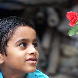Innocence  by Sourav Naskar - Babies & Children Children Candids ( child, rose, innocent, innocence, children )