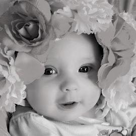 Flower Baby B&W by Cheryl Korotky - Black & White Portraits & People