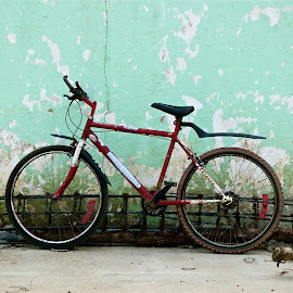 VIRULA by Jose Mata - Transportation Bicycles