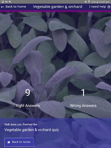 AmuseIT - screenshot
